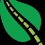 greener-leaf-colour